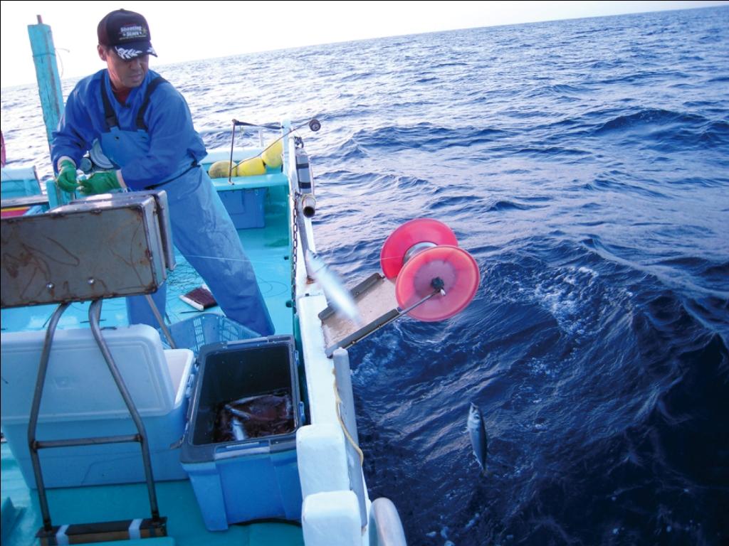 漁法2(圧縮)